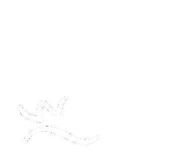 Fördermitglied des WFV Wasserburg